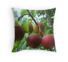 my first pears Throw Pillow