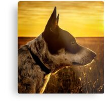 Angel Dog Metal Print