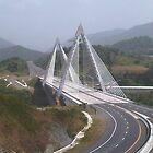 La Plata Bridge by Elias Santiago