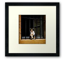 On Guard Framed Print