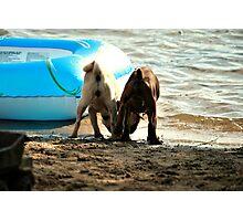 Beach Lovers Photographic Print