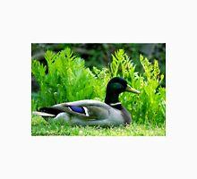 #354            Drake Mallard Duck Unisex T-Shirt