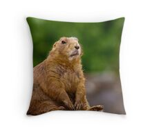 Oh Brother! (The Face of Boredom) Throw Pillow