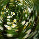 Floral Swirl by Ritva Ikonen