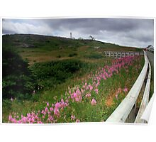 The Cape Spear Trail Poster