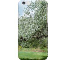 I Love Spring! iPhone Case/Skin