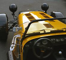 lotus 7 by WildBillPho