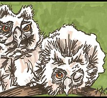 Owlets by Kat Anderson