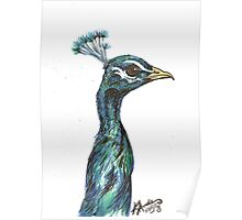 Plumage Poster