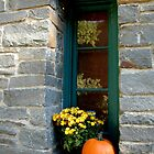 October Window by Margaret  Shark
