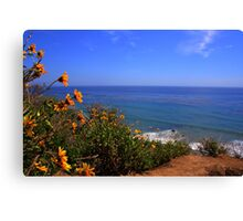Spring at La Piedra State Beach Canvas Print