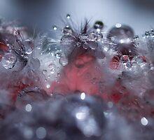 Pink Champagne by Jenni77