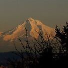 Mt. Hood by orangedana