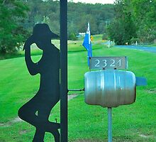 Aussie Stockman Mailbox by Penny Smith