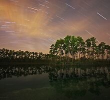 Long Pine Night by Rick Gomez