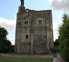Donjon of Montbazon by cedriccochez