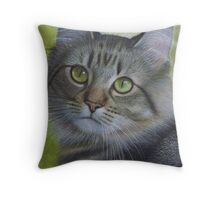 Portrait of a Tabby Throw Pillow