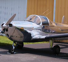 Ercoupe by Linda Costello Hinchey