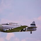 Paradise in flight WWII trainer (1) by Linda Costello Hinchey