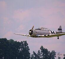WW II training plane by Linda Costello Hinchey