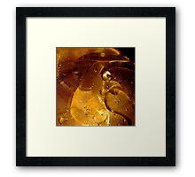 Oil bird Framed Print
