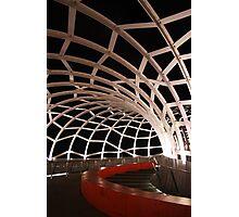Web Bridge Photographic Print