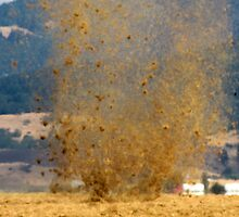 Whirlwind of Hay by scenebyawoman