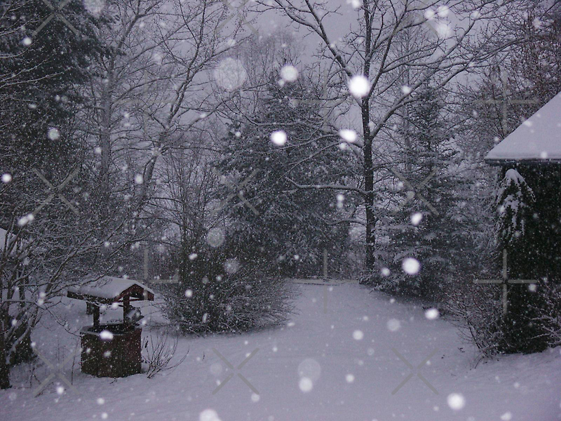 Winter Wonderland in the Appalachians by Linda Costello Hinchey
