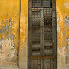 Havana Door by Gwilym