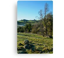 Morning Frost, Strathbogie Ranges,Victoria Canvas Print