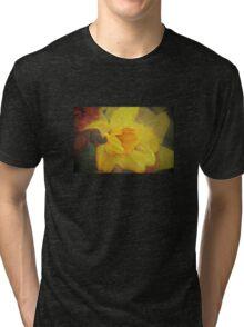A host of golden daffodils Tri-blend T-Shirt