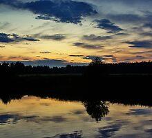 Summer Evening #2 by MarianaEwa