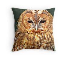""""""" Birds OF PREY"""" Throw Pillow"""