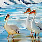 Pelicans Western Cape South Africa by Rina Botha