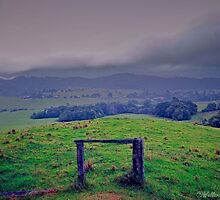 Blue Hills at Ulong by wallarooimages