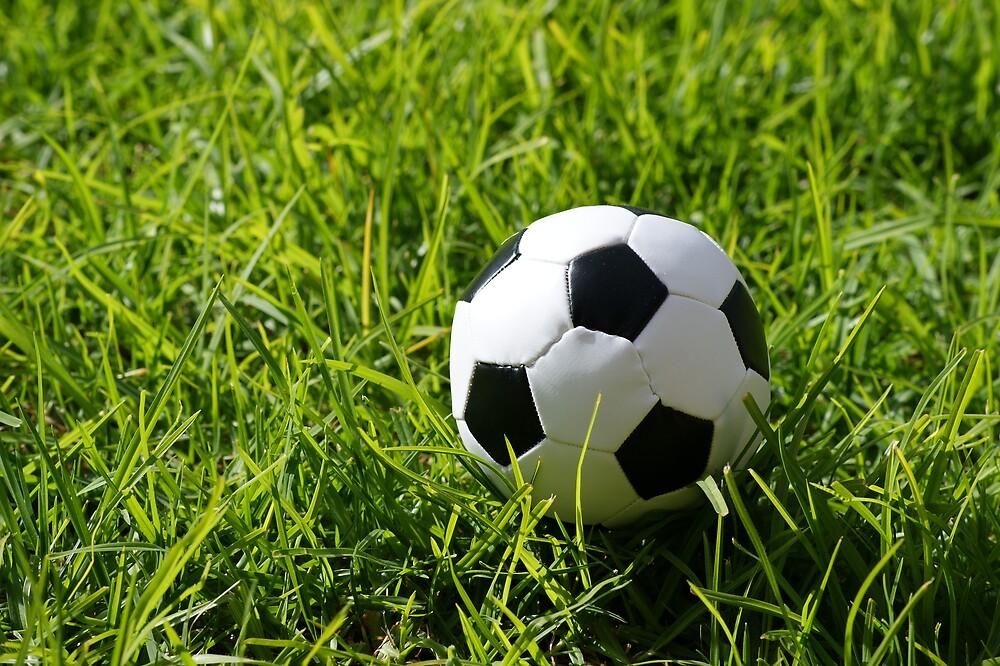 Soccer Ball by mattsibum