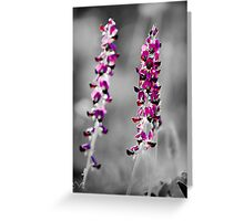 Flower selective colouring Greeting Card