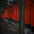 Looking in on Inari by villephant