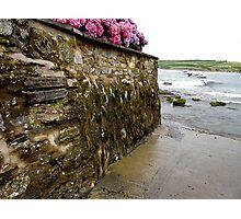 Wet Path Photographic Print