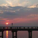 South Carolina Sunset by Paula Parker