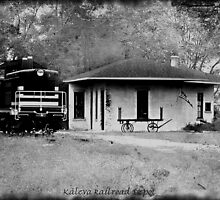 Kaleva RailRoad Depot by Shelly Harris
