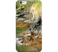 Tidal Sentinel iPhone Case/Skin