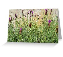Fairy Wing Lavender Greeting Card