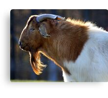 Love the goat -tee  Canvas Print
