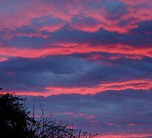 pinkish blue sunset by tego53