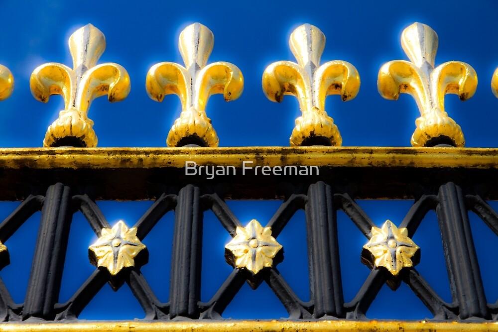 Golden Glow - Buckingham Palace - London by Bryan Freeman