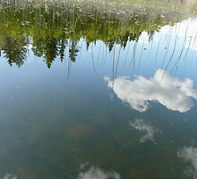 Topsy-Turvy Reflections on Pinkney Lake, Northern Sask,Canada by MaeBelle