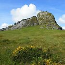 Dartmoor: Haytor, The Lion Rock by Rob Parsons