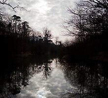 Pond in the forest by jalb