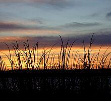 Dawn at the seashore by jalb